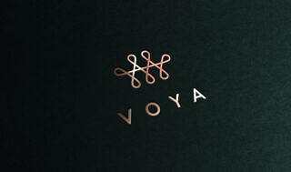 Voya – Logo (Physical)